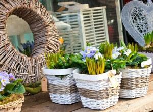 Garden Center, trees, bushes, pernnials, annuals, hanging baskets